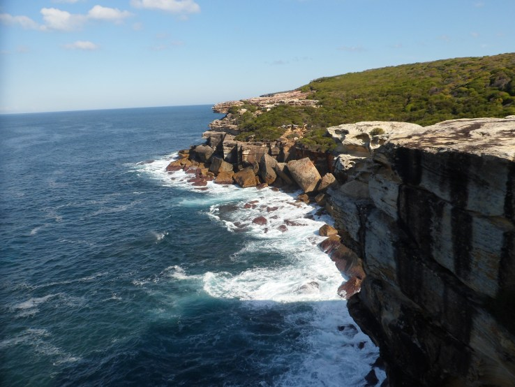 A walk to remember sydney royal national park