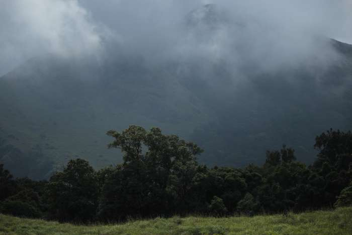Wayanad chembra peak top