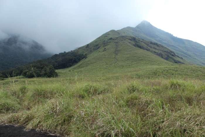 Chembra peak wayanad