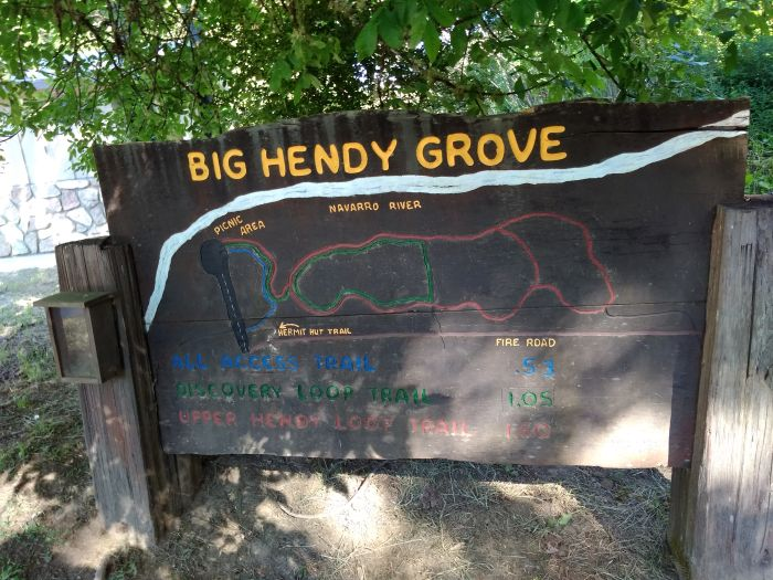 Big Hendy Grove