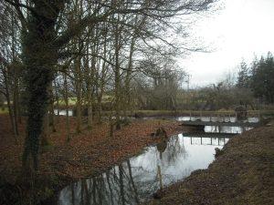 River Cam near Coaley Mill