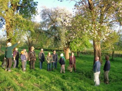 Keith Turner, GOT Chairman, leading a group around our orchards at Longney