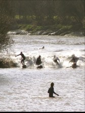 The Severn Bore from the Anchor Inn. Picture borrowed from Karen Humphries of TCTOP.