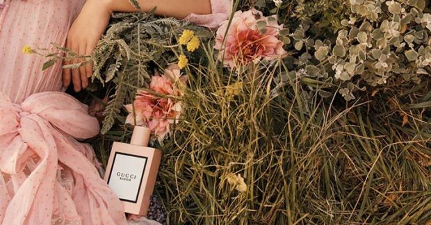 Gucci Canada Canadian Freebies Free Gucci In Bloom Perfume Fragrance Eau de Parfum Sample - Glossense