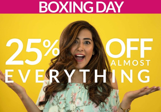 Vasanti Cosmetics Canada 2019 Boxing Day Canadian Sale & Deals Save 25 Off Almost Everything - Glossense