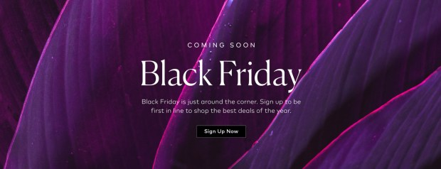 Beautylish Canada 2020 Black Friday Canadian Sale Deals Coming Soon - Glossense