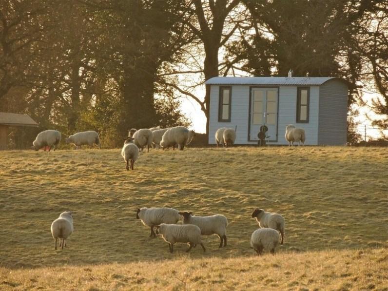 Top Farm image