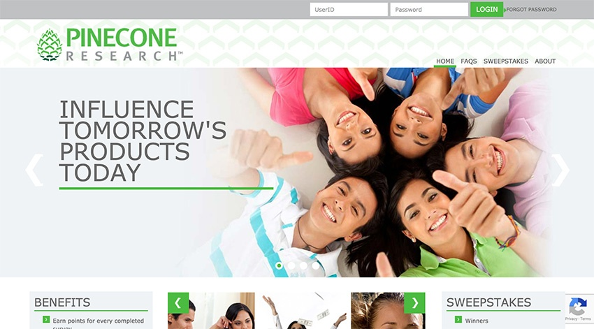 Pinecone research paid surveys