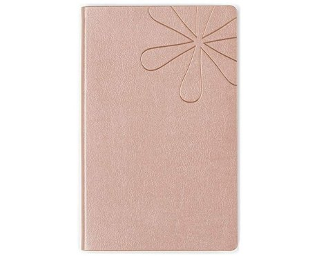 erin condren rose gold lined notebook