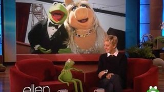 Kermit The Frog Interview Nov 09 2011