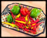 The pepper harvest during the summer is bright and colorful and SPICY.