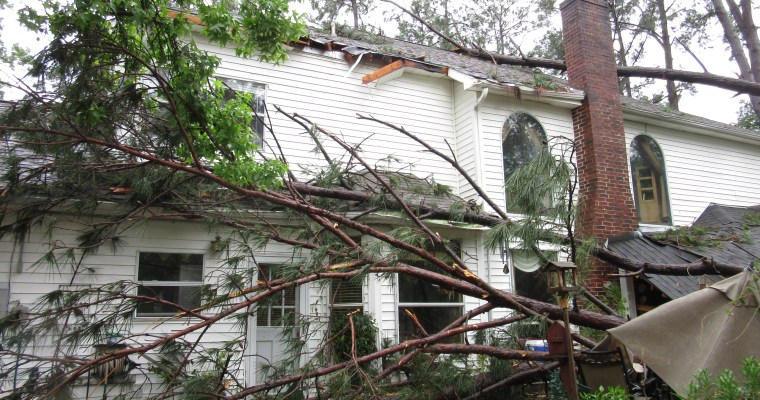 If a Tree Falls on the House, Does Anyone Hear It?