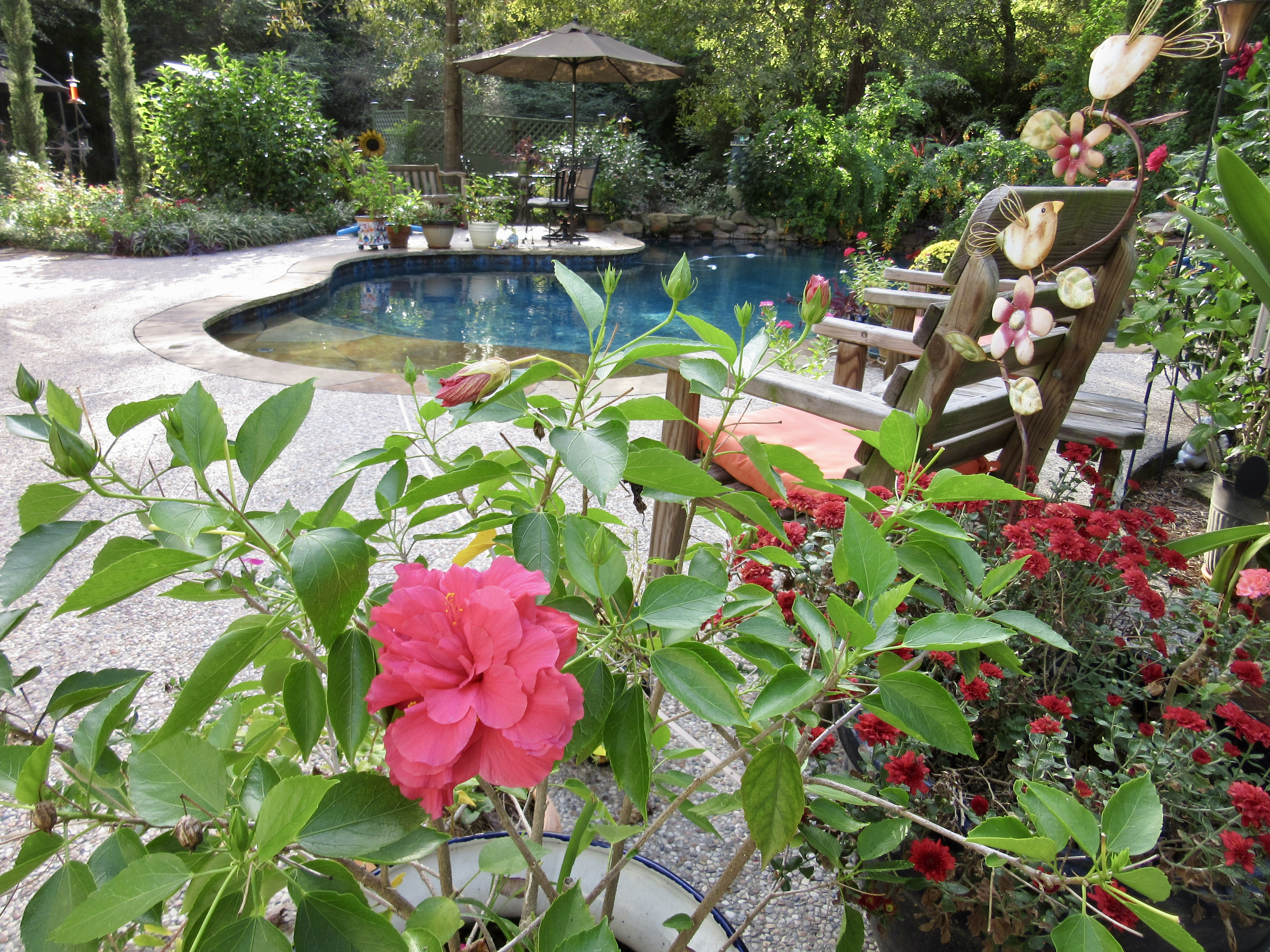 Haiku for Autumn in Southeast Texas: October's Party
