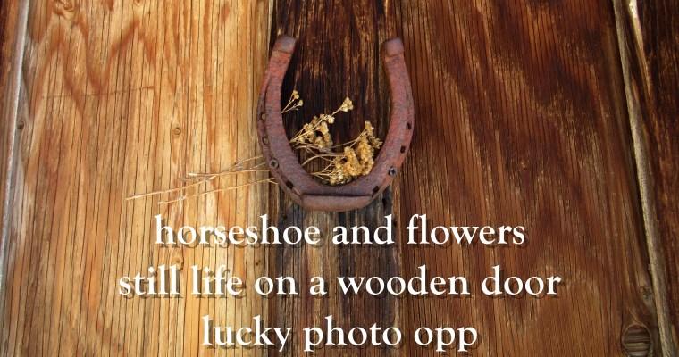 Haiku: Still Life on Wooden Door