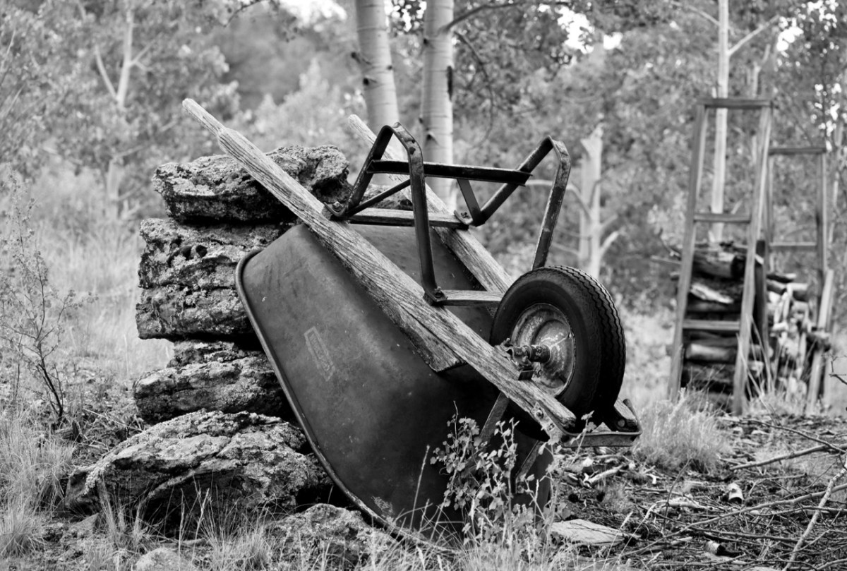 Wheelbarrow Black and White