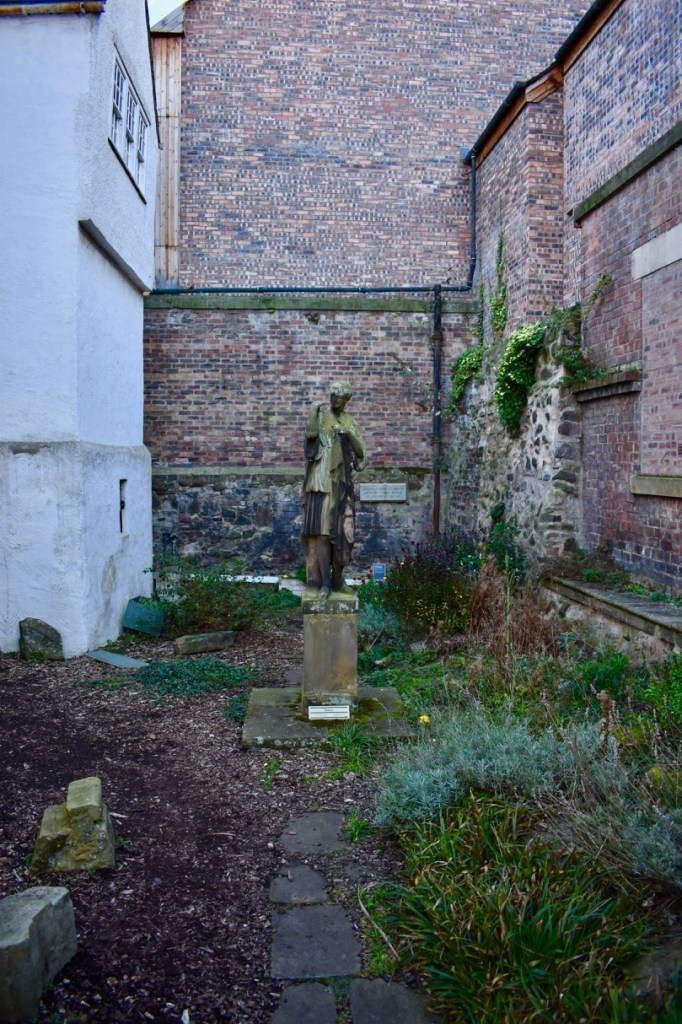 Wild-looking courtyard