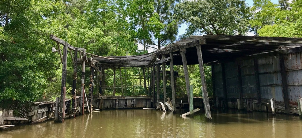 Stormy Weather: Reflections and Musings on Hurricanes