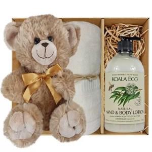 Bailey Teddy Bear Gift Boxes