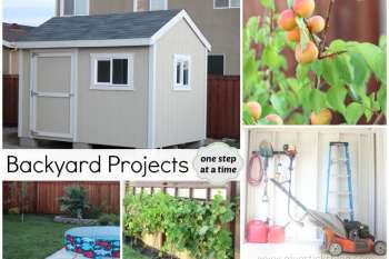 Backyard Projects: One Step at a Time
