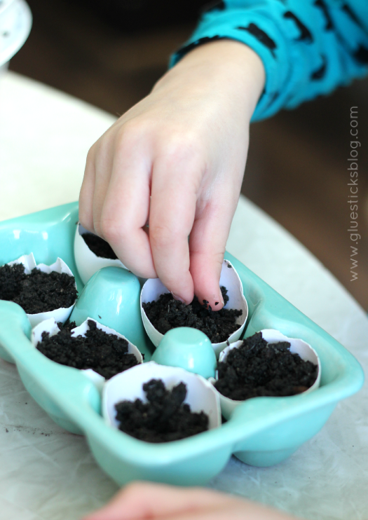 Egg Shell Seed Starters