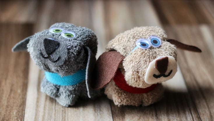 two puppy wash cloths