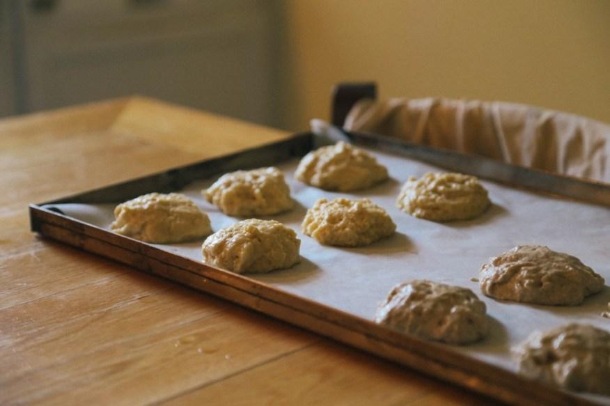 dough rising