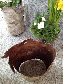 Empty cylinder, and planted glass container