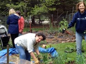 Tending the vegetable garden