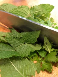 Chopping the mint and cilantro