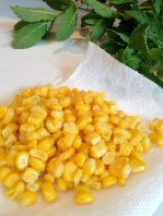 Organic corn defrosting (Maine's not harvesting yet)
