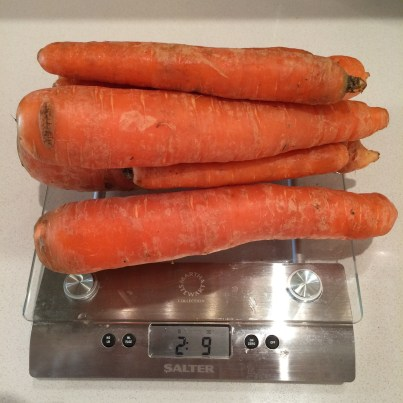 Weighing local carrots