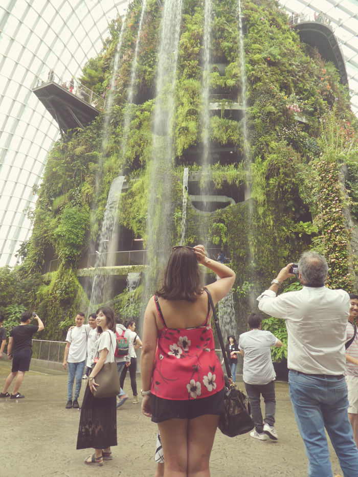Gardens by the Bay Cloud Forest Waterfall | Gluten Free Horizons