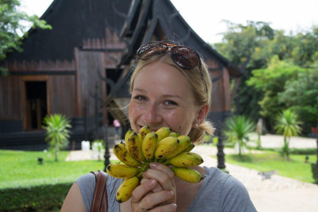 Bananen in Chiang Rai, Thailand