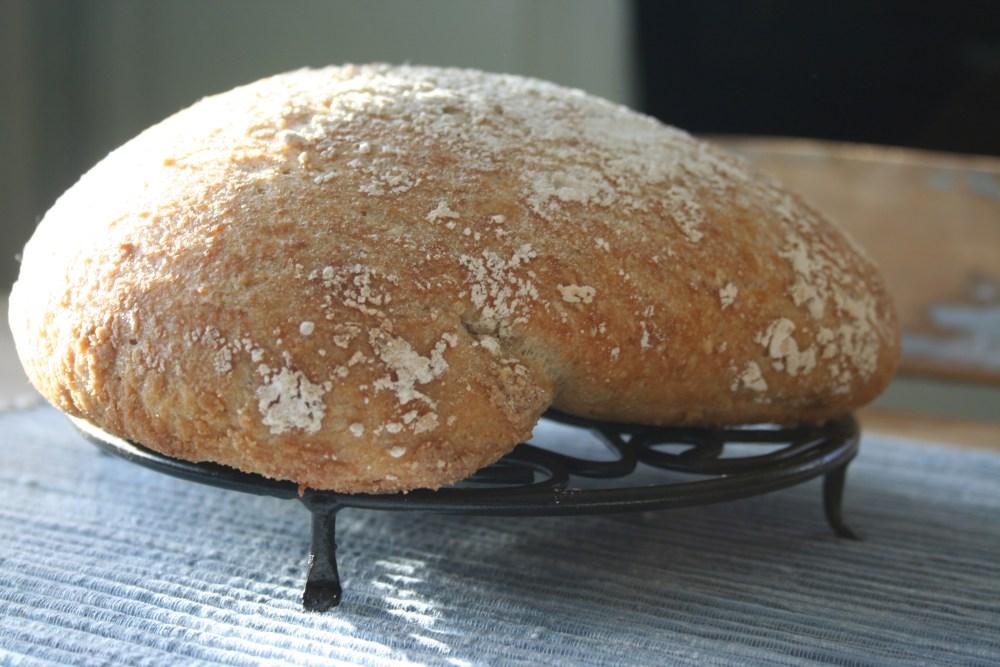 no-knead-bread-havre-012