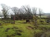 Glenbrae Ruins