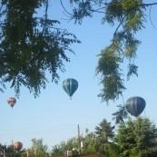 hot air balloons '12 029