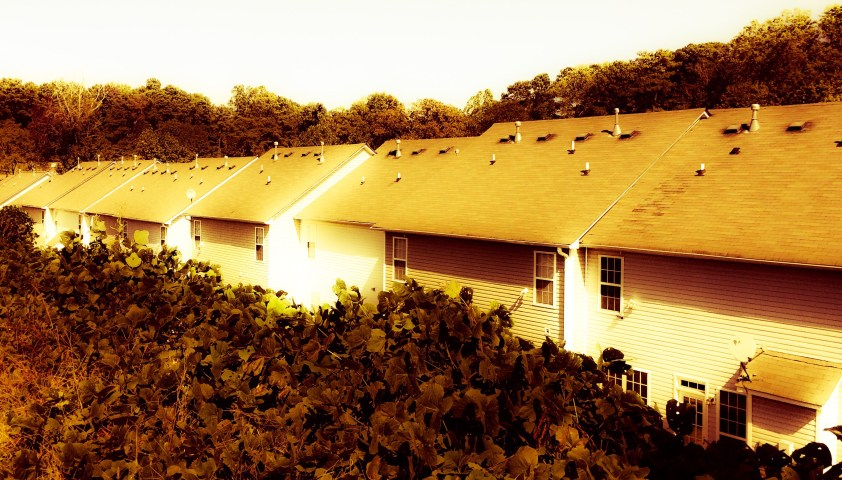 Non-descript row of houses