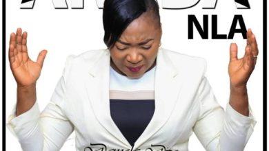 Photo of Damola Dipo – Araba Nla Mp3 Download