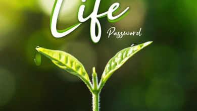 Photo of Password – Life Lyrics & Mp3 Download