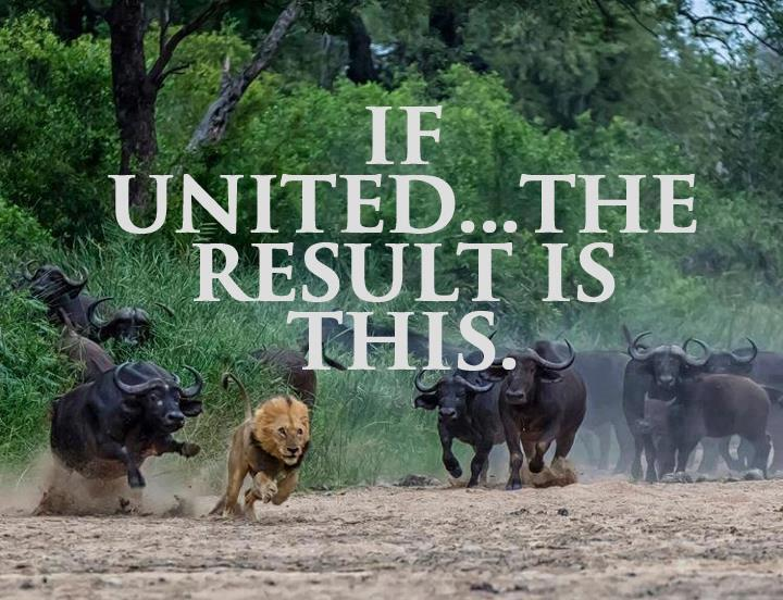 End result!