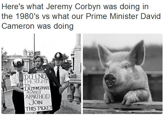 Join this Pig!