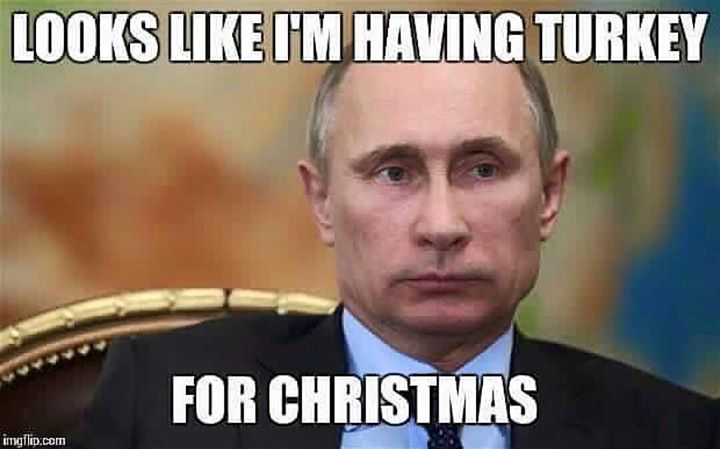 Turkey for Xmas!
