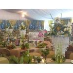 Bridal shops In Lagos: Their Office Addresses And All You Must Know About Them