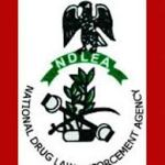 NDLEA: Functions Of National Drugs Law Enforcement Agency And Their Office Address
