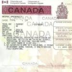 How To Obtain Study Permit In Canada, The Requirements And All You Need To Know