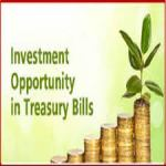 Treasury Bills In Nigeria: How To Invest, The Requirements And All You Must Know