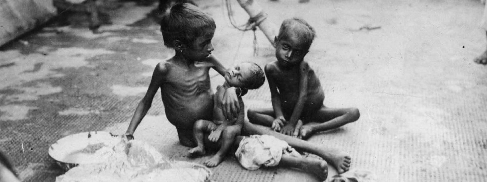 Revisiting the Great 1943 Bengal Famine