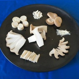 King Oyster Mushroom Serving Styles