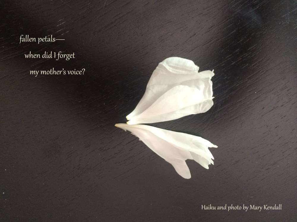 My Mother's Voice haiga