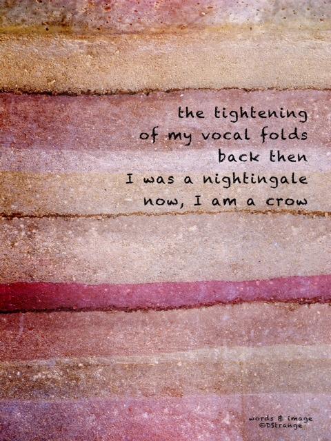 the tightening /of my vocal folds/back then/I was a nightingale/now, I am a crow